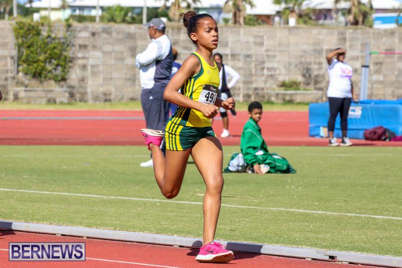 Track-Field-Meet-Bermuda-February-22-2015-154
