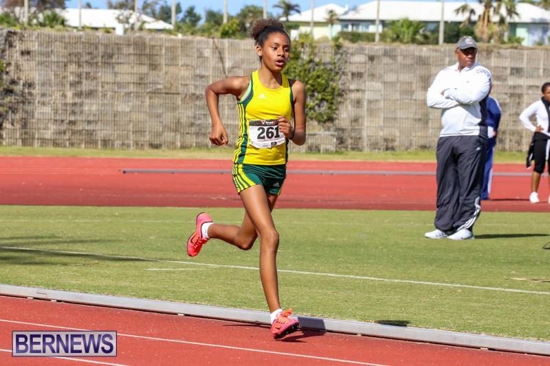 Track-Field-Meet-Bermuda-February-22-2015-160
