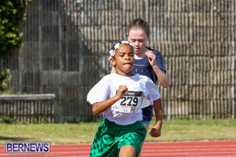 Track-Field-Meet-Bermuda-February-22-2015-163