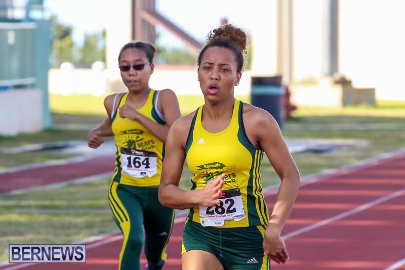 Track-Field-Meet-Bermuda-February-22-2015-193