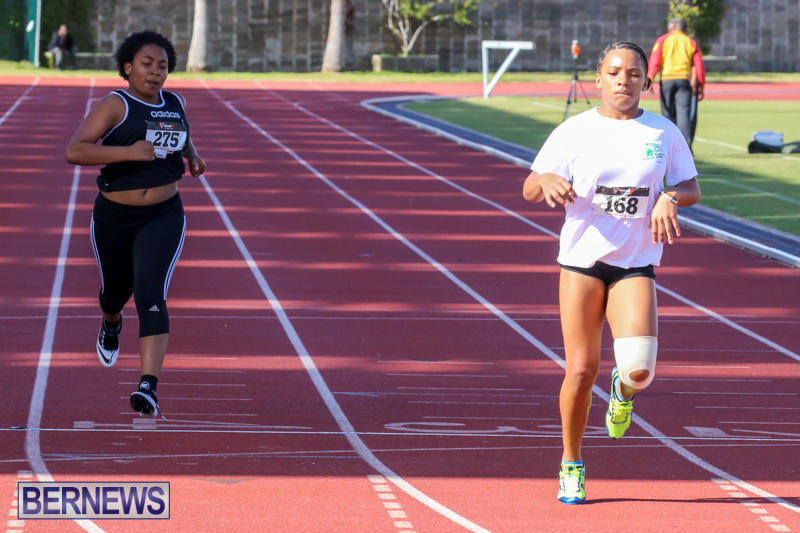 Track-Field-Meet-Bermuda-February-22-2015-210
