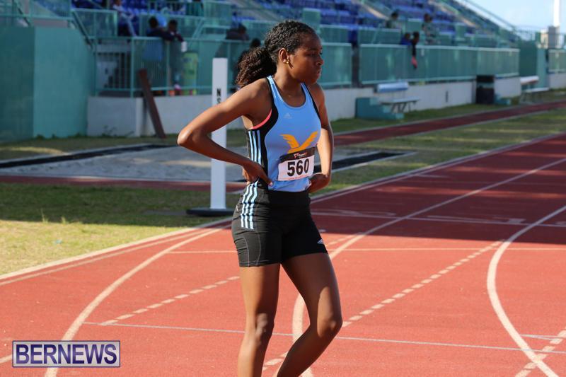 Track-Field-Meet-Bermuda-February-22-2015-211