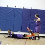 basketball 2015-Feb-7 (15)