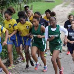 crosscountry2015feb12 (13)
