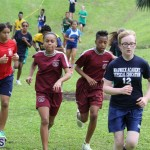 crosscountry2015feb12 (14)