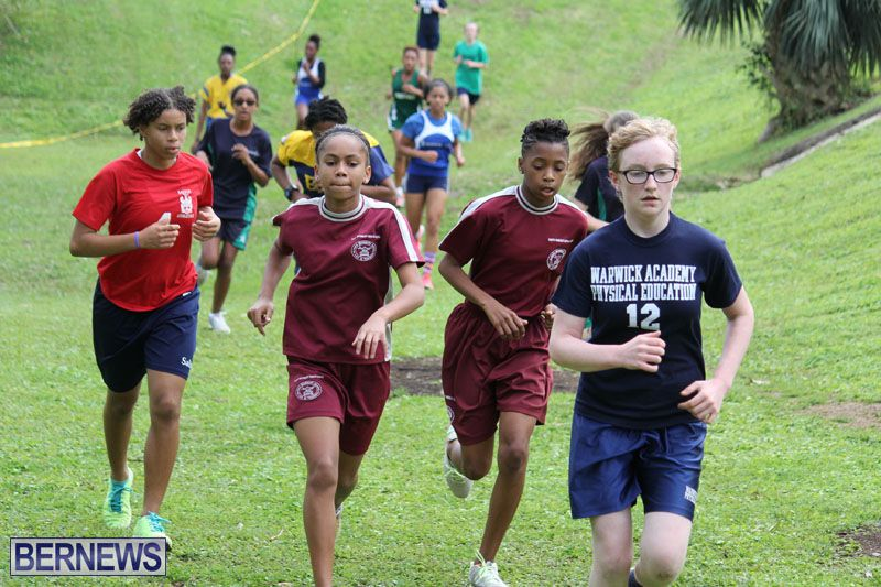 crosscountry2015feb12-14