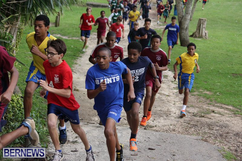 crosscountry2015feb12-16