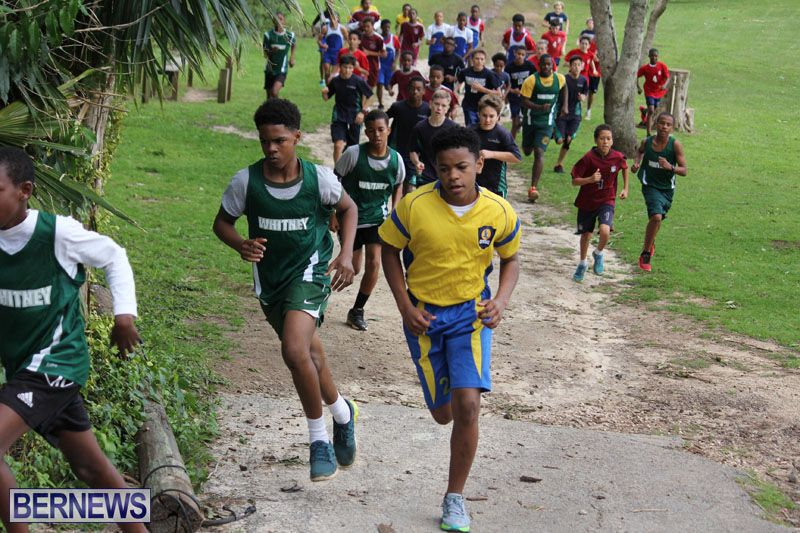 crosscountry2015feb12-17