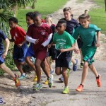 crosscountry2015feb12 (4)