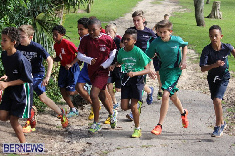 crosscountry2015feb12-4