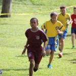 crosscountry2015feb12 (5)