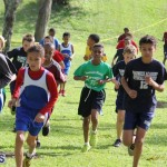 crosscountry2015feb12 (8)