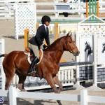 equestrian 2015 Feb 2 (12)