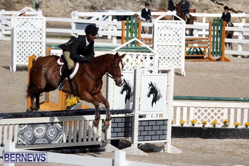 equestrian-2015-Feb-2-16