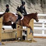 equestrian 2015 Feb 2 (17)