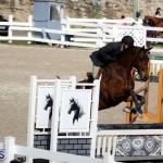 equestrian 2015 Feb 2 (18)