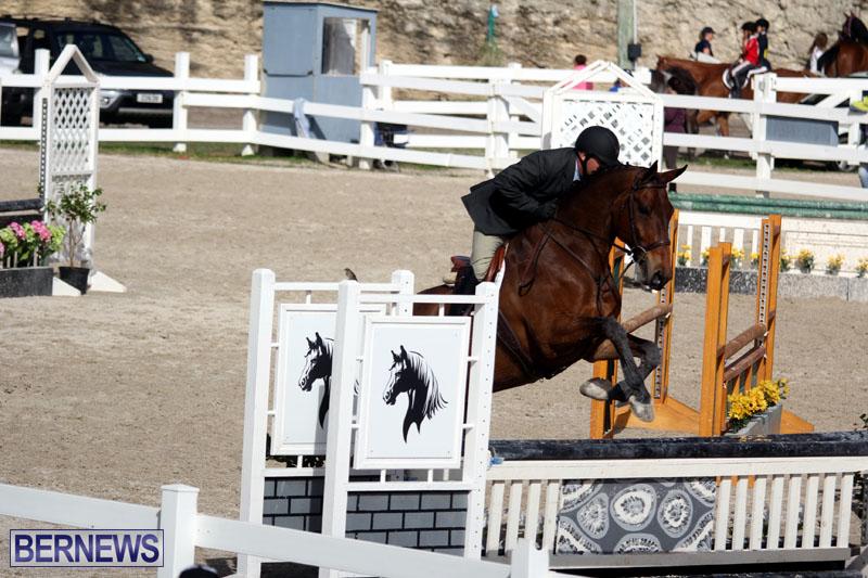 equestrian-2015-Feb-2-18