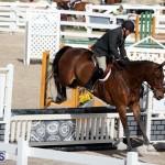 equestrian 2015 Feb 2 (19)
