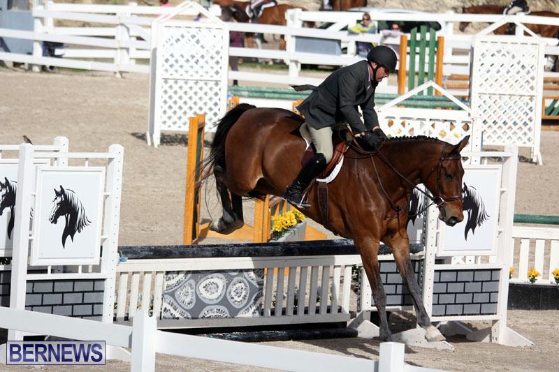 equestrian-2015-Feb-2-19