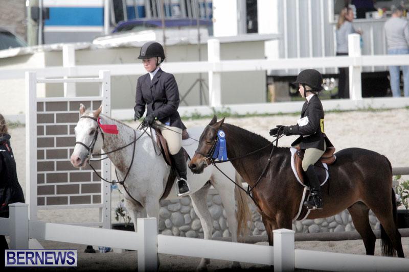 equestrian-2015-Feb-2-2