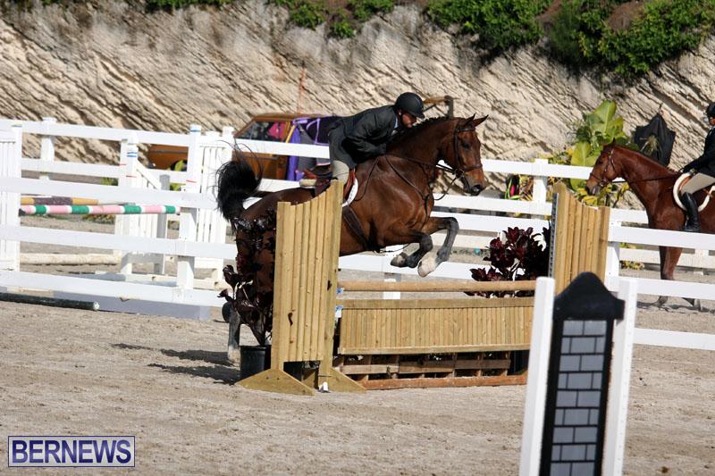 equestrian-2015-Feb-2-20