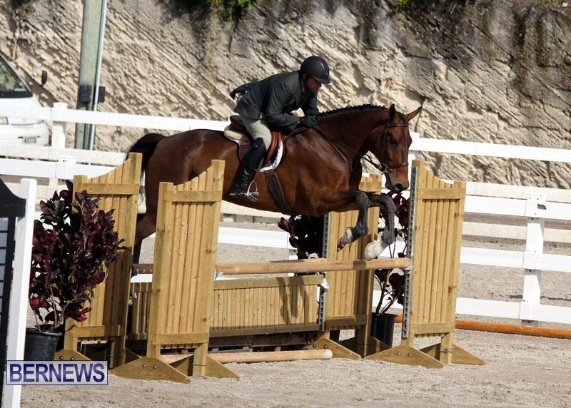 equestrian-2015-Feb-2-21