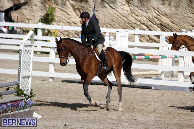equestrian-2015-Feb-2-22
