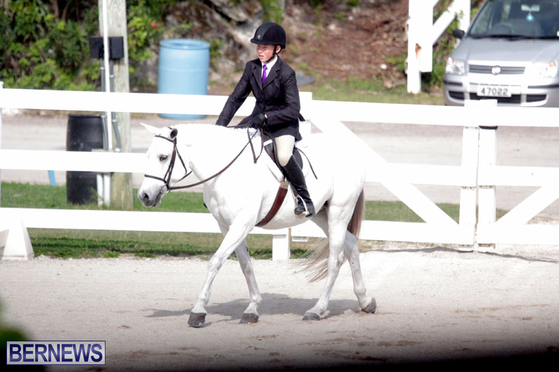 equestrian-2015-Feb-2-3