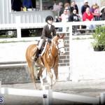 equestrian 2015 Feb 2 (5)