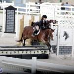 equestrian 2015 Feb 2 (7)