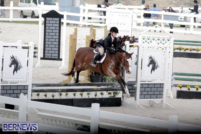 equestrian-2015-Feb-2-7