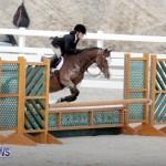 equestrian 2015 Feb 2 (8)