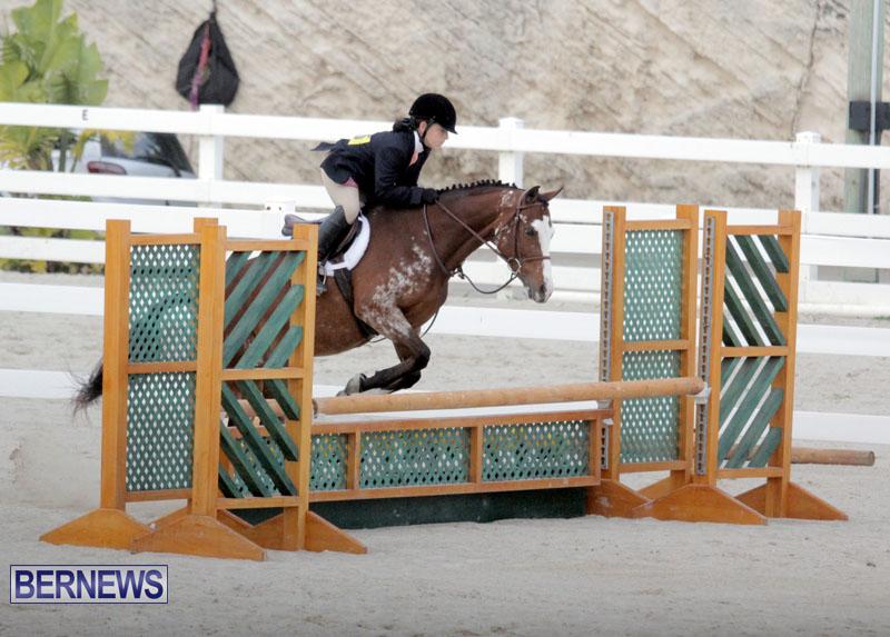 equestrian-2015-Feb-2-8