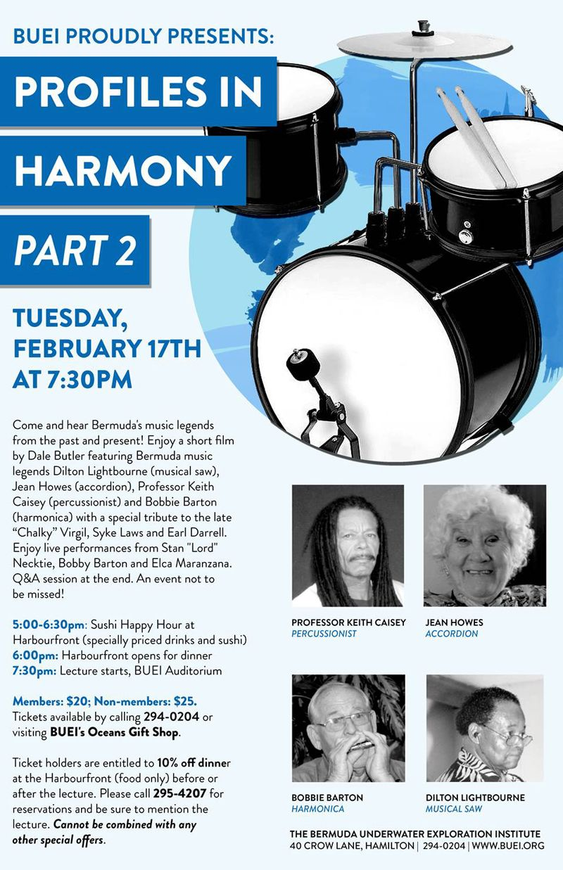 profiles in harmony part 2 poster