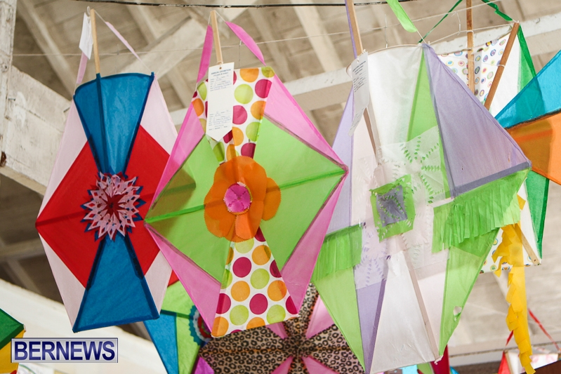 2013-ag-show-kites-bda-10