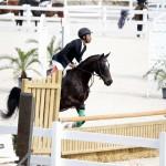BHPA Spring Horse Jumping Mar 19 (13)