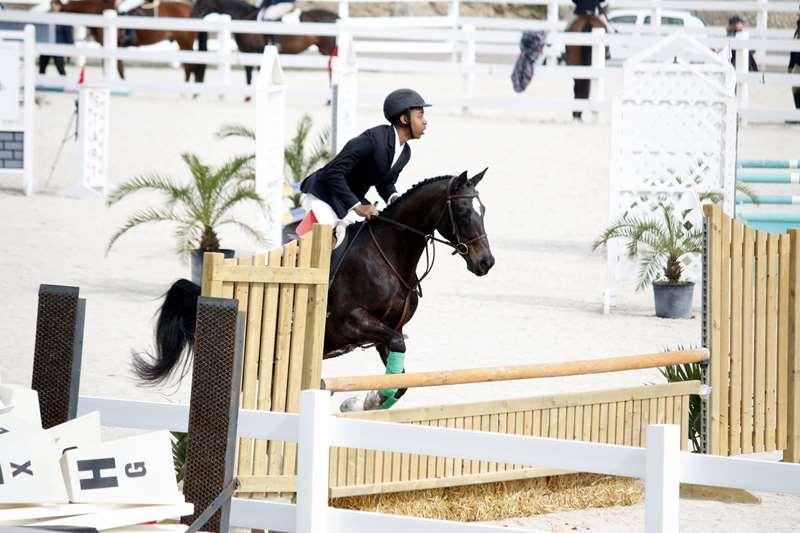 BHPA-Spring-Horse-Jumping-Mar-19-13