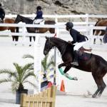 BHPA Spring Horse Jumping Mar 19 (16)