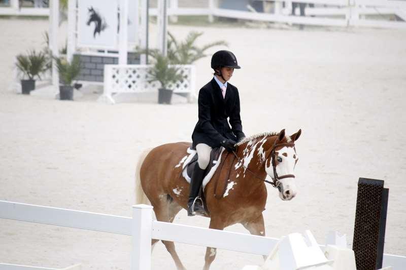 BHPA-Spring-Horse-Jumping-Mar-19-3