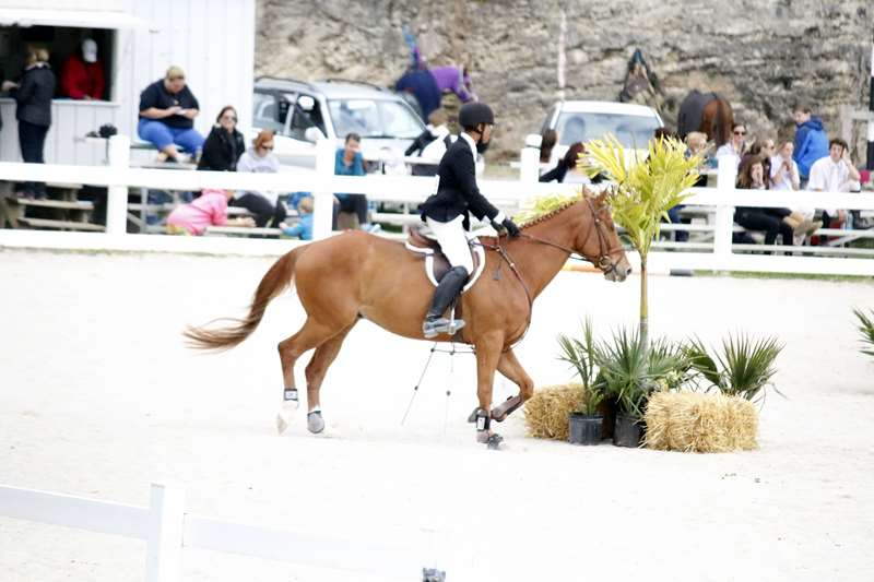 BHPA-Spring-Horse-Jumping-Mar-19-6