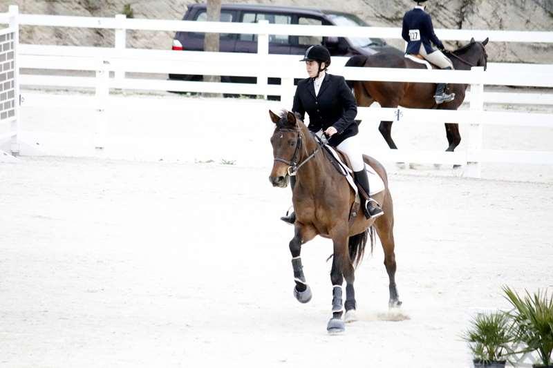 BHPA-Spring-Horse-Jumping-Mar-19-7