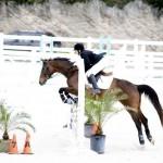 BHPA Spring Horse Jumping Mar 19 (9)