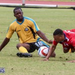 Bermuda vs Bahamas, March 29 2015-231