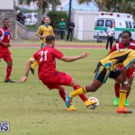 Bermuda vs Bahamas, March 29 2015-256