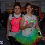 Earth Hour Bermuda, March 28 2015-20