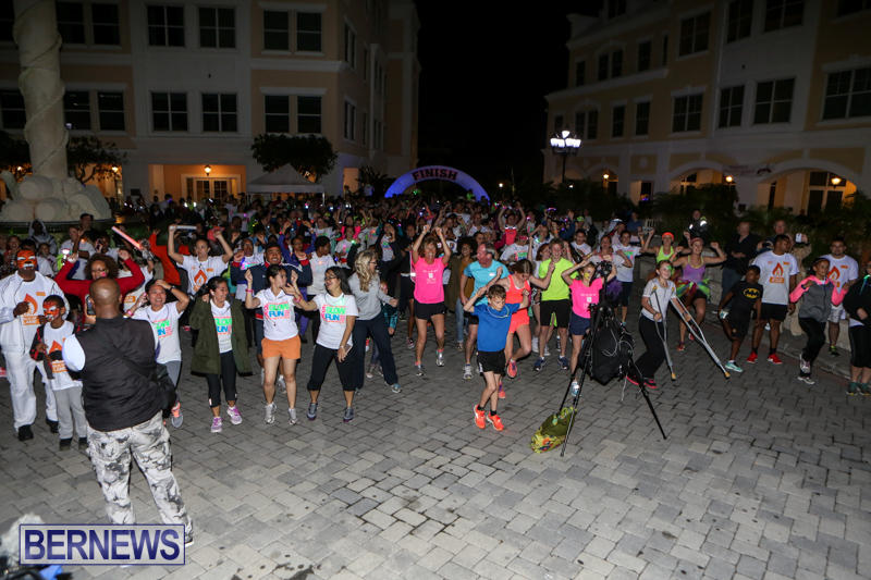 Earth-Hour-Bermuda-March-28-2015-32