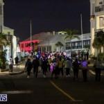 Earth Hour Bermuda, March 28 2015-38