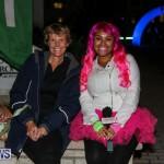 Earth Hour Bermuda, March 28 2015-39