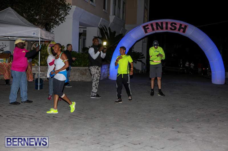Earth-Hour-Bermuda-March-28-2015-40