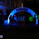 Earth Hour Bermuda, March 28 2015-50